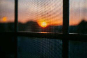 An Easy Way of Cleaning your Window Fly Screen of Any Type